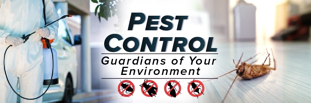 Find Termite Control in Asheboro NC